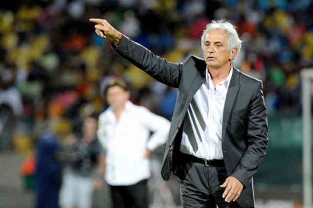 Vahid Halilhodzic will move after the World Cup 2014